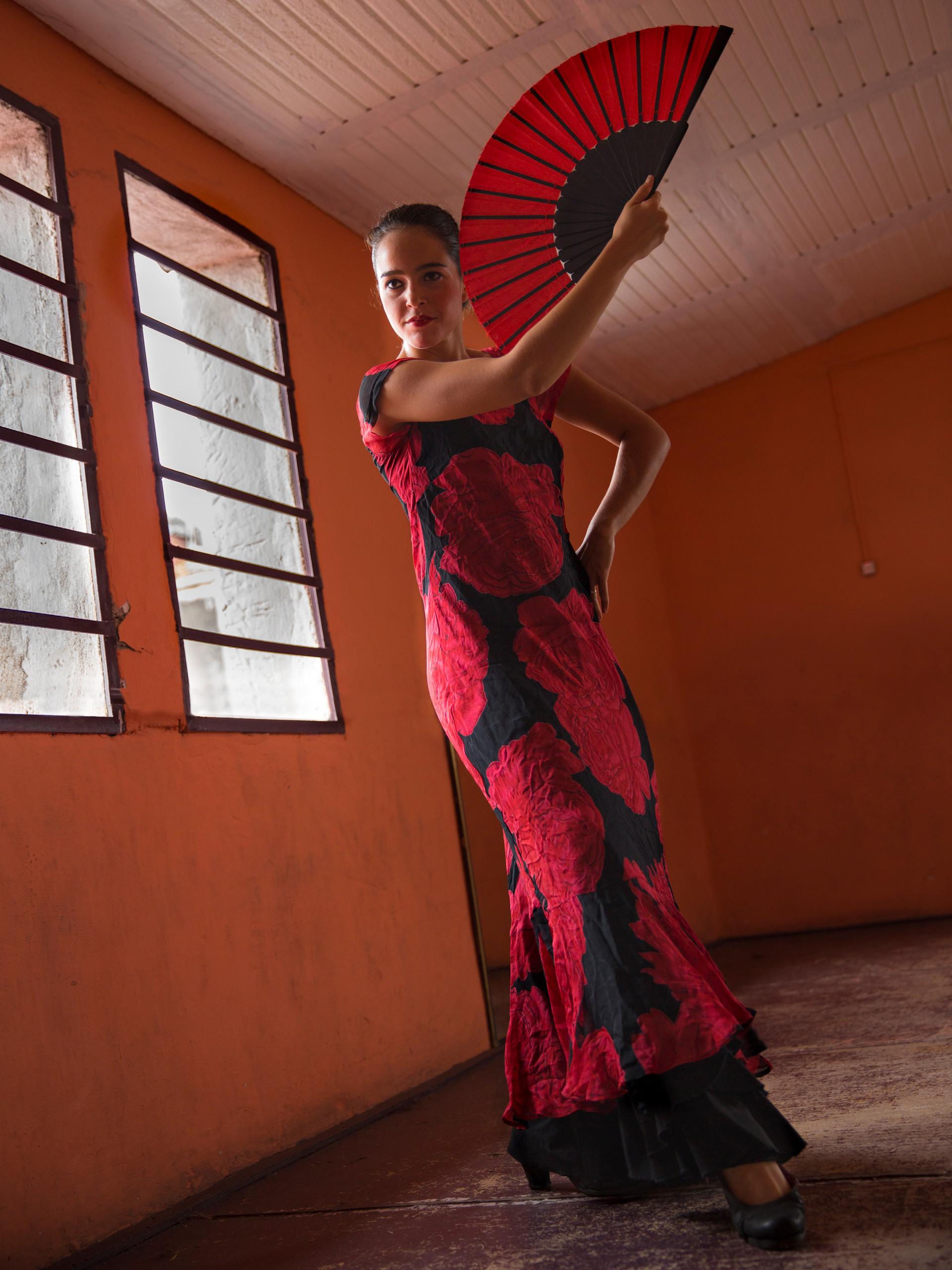 Flamenco Dancer, Havana