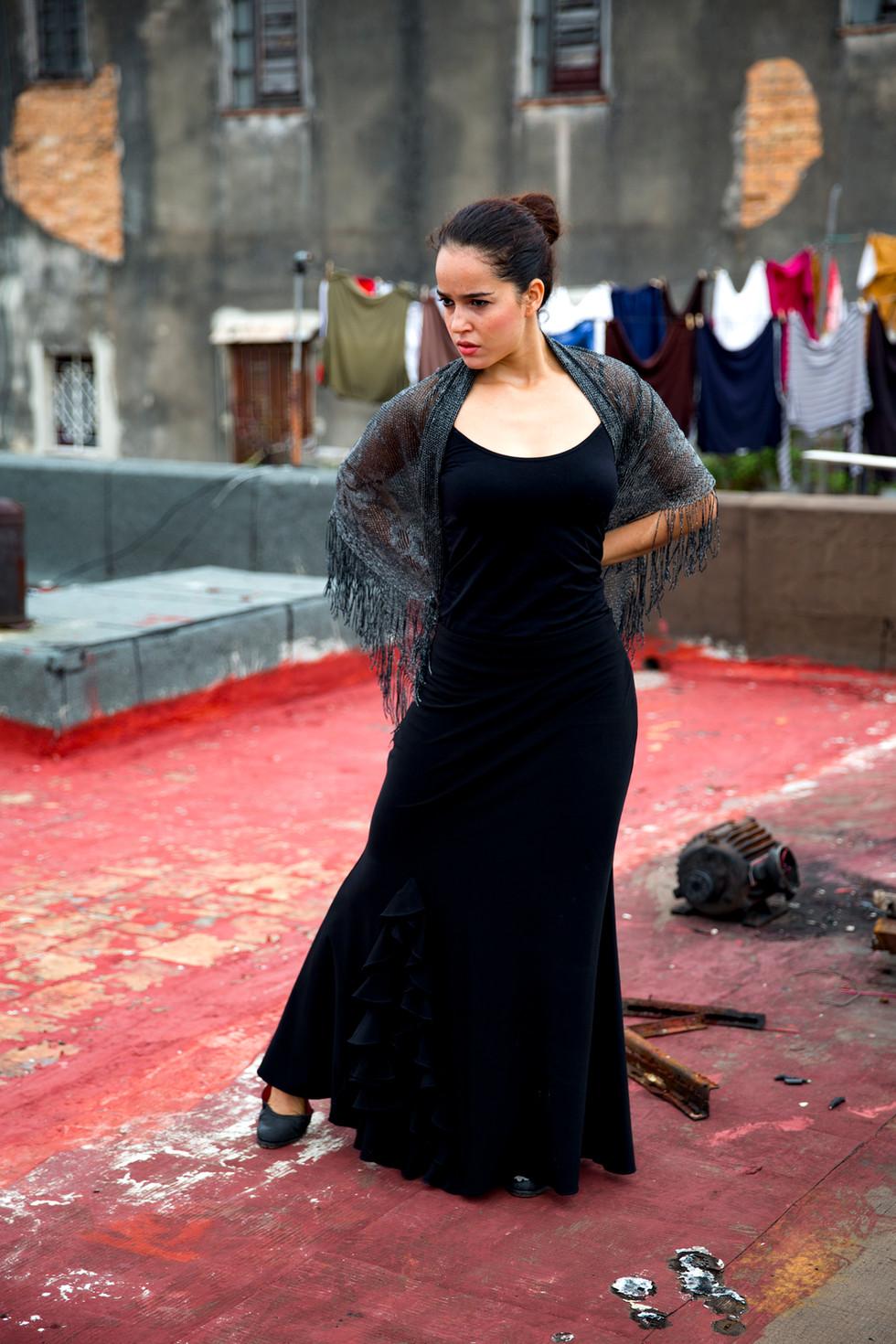 Flamenco Dancer on Rooftop, Havana