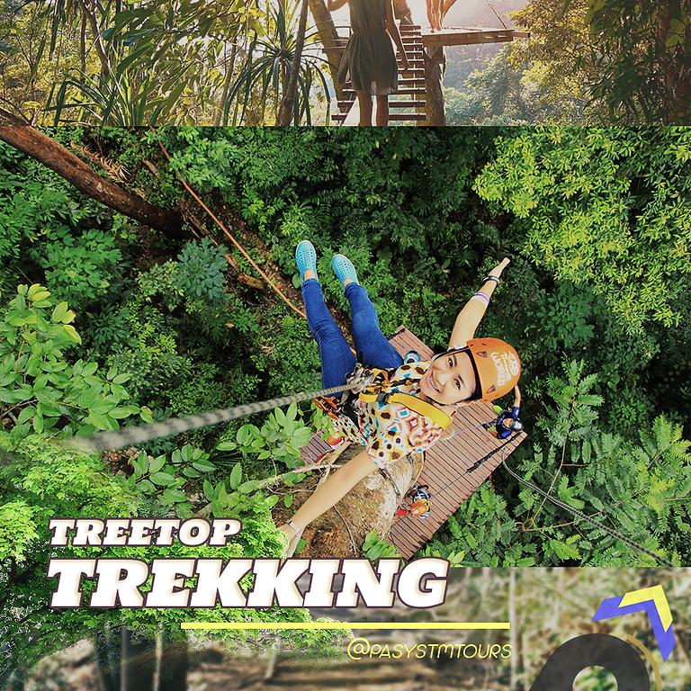 P.A.'s Tree Top Trekking / ZipLine