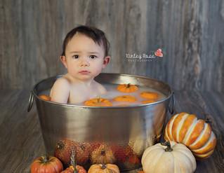 Noah's Pumpkin Milk Bath - Kinley Rose Photography, Clarksville, TN Newborn Photographer