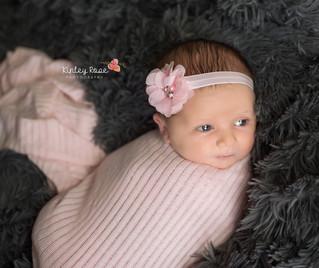 Eloise {19 Days New} - Kinley Rose Photography, Clarksville, TN Newborn Photographer