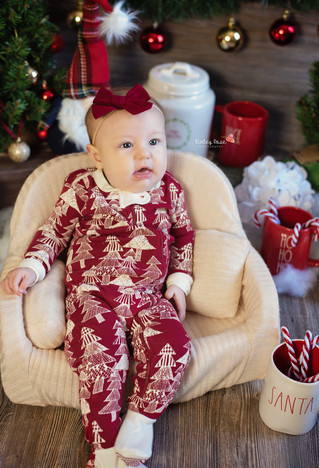 Piper & Posie's Holiday Mini Session - Kinley Rose Photography, Ludowici, GA Newborn Photogr