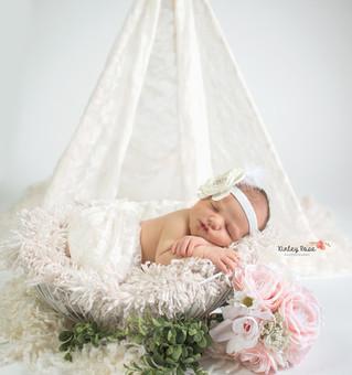 Paisley {9 Days New} - Kinley Rose Photography, Clarksville, TN Newborn Photographer