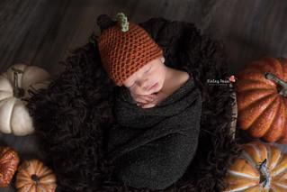 Jaxon {13 Days New} - Kinley Rose Photography, Clarksville, TN Newborn Photographer