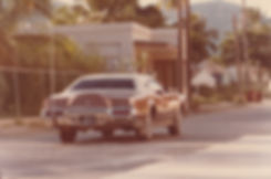 1981-SAINT MARTIN-PHILIPSBURG-LINCOLN CO