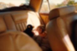 1983-NILS-SHENANDOAH-9.jpg