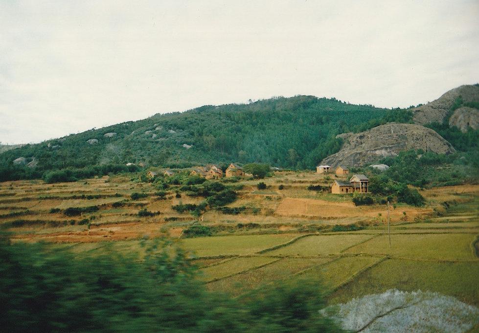 1991-1-TANA-BRICKAVILLE-1.jpg