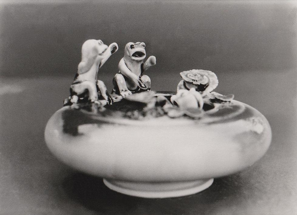 1977-GRENOUILLES-9.jpg