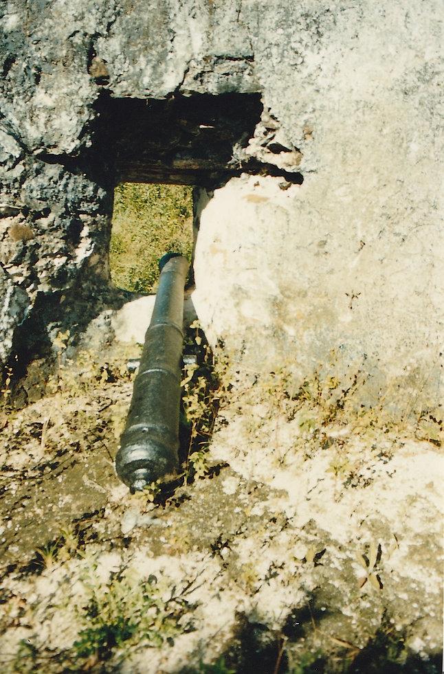 1991-FOULPOINTE-FORT MANDA-2.jpg