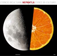 NEPANTLA-XIX.png