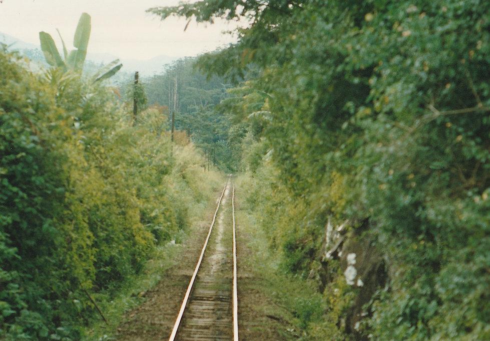 1991-1-TANA-BRICKAVILLE-9.jpg