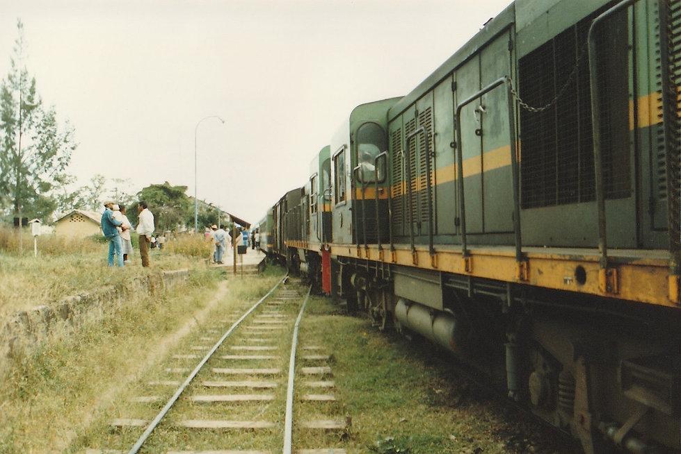 1991-1-TANA-BRICKAVILLE-27.jpg