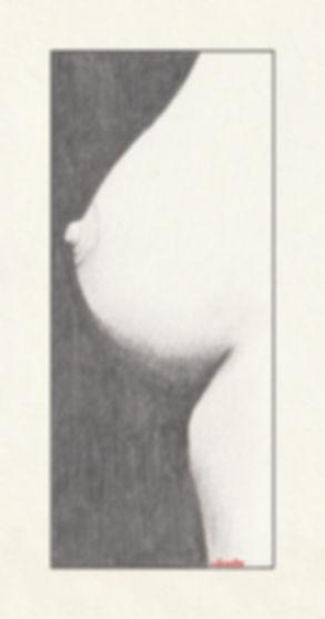 DE-33-S.jpg
