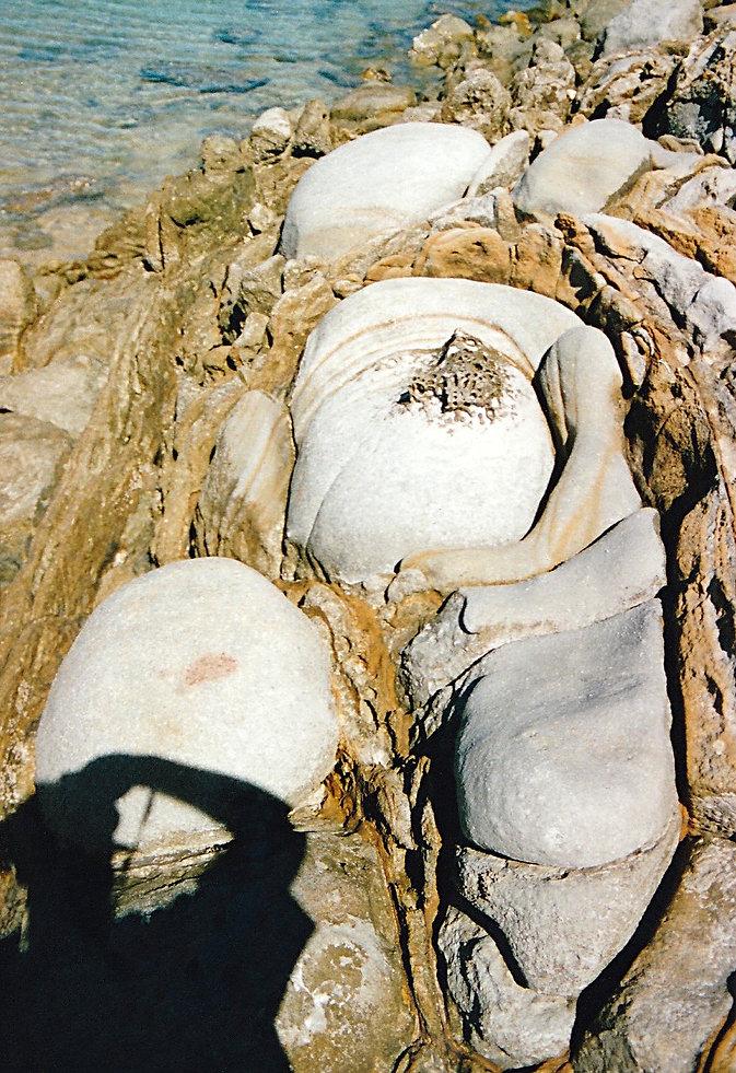 1994-NOSY FALLY-NICOLAS-2.jpg