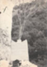 1973-MAYRES-2.jpg