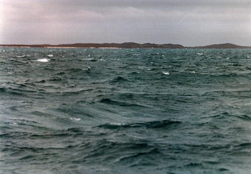 1983-LONG ISLAND.jpg