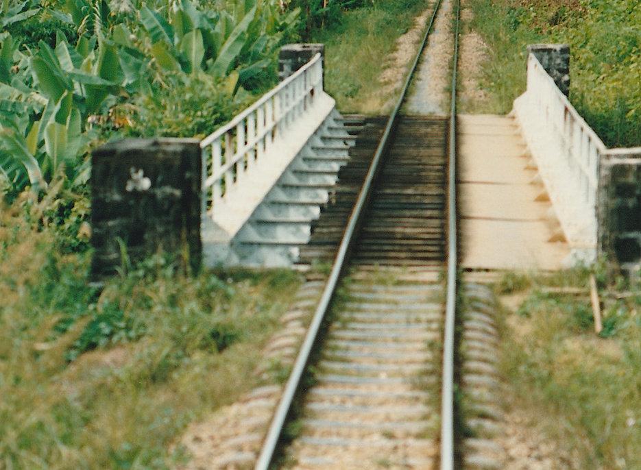 1991-1-TANA-BRICKAVILLE-11.jpg