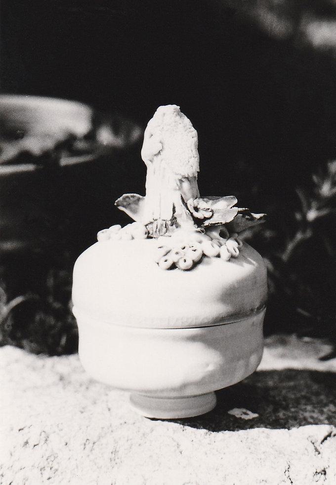 1976-PORCELAINE BOITE-2.jpg