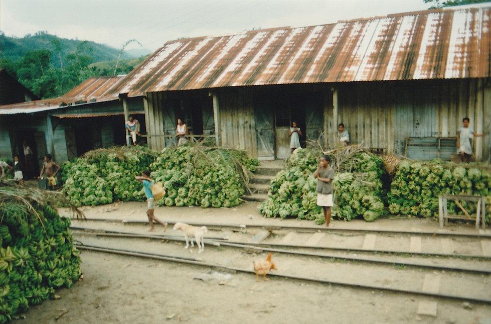 1991-1-TANA-BRICKAVILLE-26.jpg