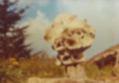 1976-PORCELAINE MUSHROOMS-8.jpg
