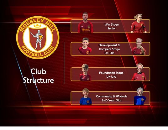 Club structure.jpg.png