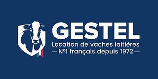 GESTEL-Logo-fd-bleu.jpg