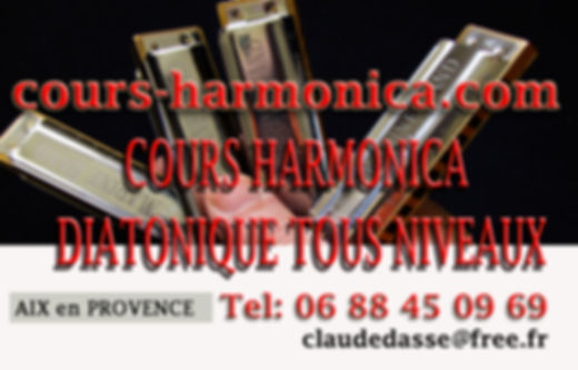 carte visite cour hamonica 2 .jpg