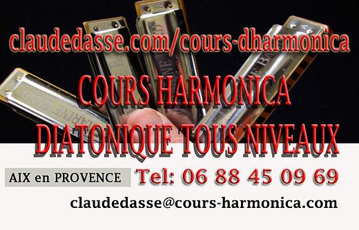 carte visite cour hamonica 3  copie.jpg