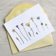 Greetings card/Postcard £60