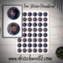 ROAM dez schwartz stickers.jpg
