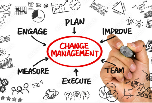 Why should organizations allocate a budget for Adoption and Change management?