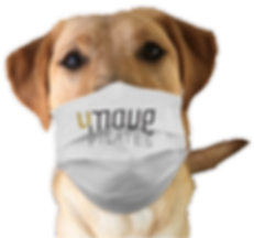 LabWithMask_ForWEBSITE.png