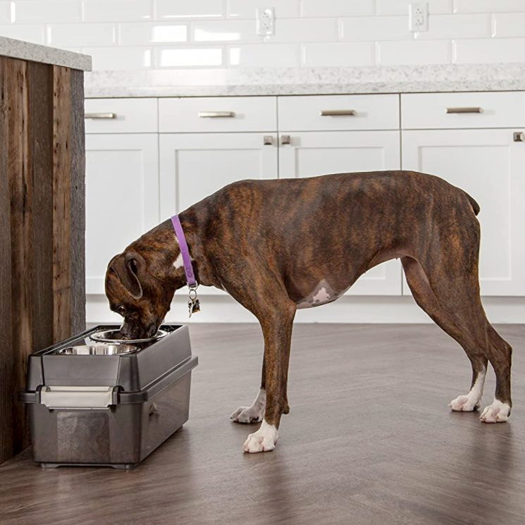 Raised dog bowls with integrated dog food storage