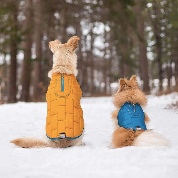 One large and one small dog sitting in the snow wearing Kurgo reversible dog coats