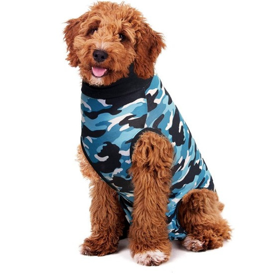Cockapoo wearing a dog recovery onesie