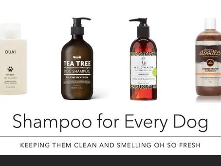 The 10 Best Dog Shampoos
