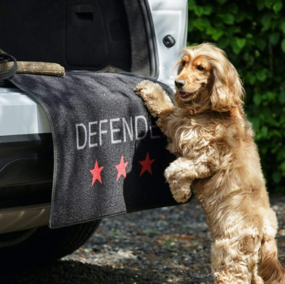 pet rebellion boot protector with bumper defender to protect the bumper from dog scratches
