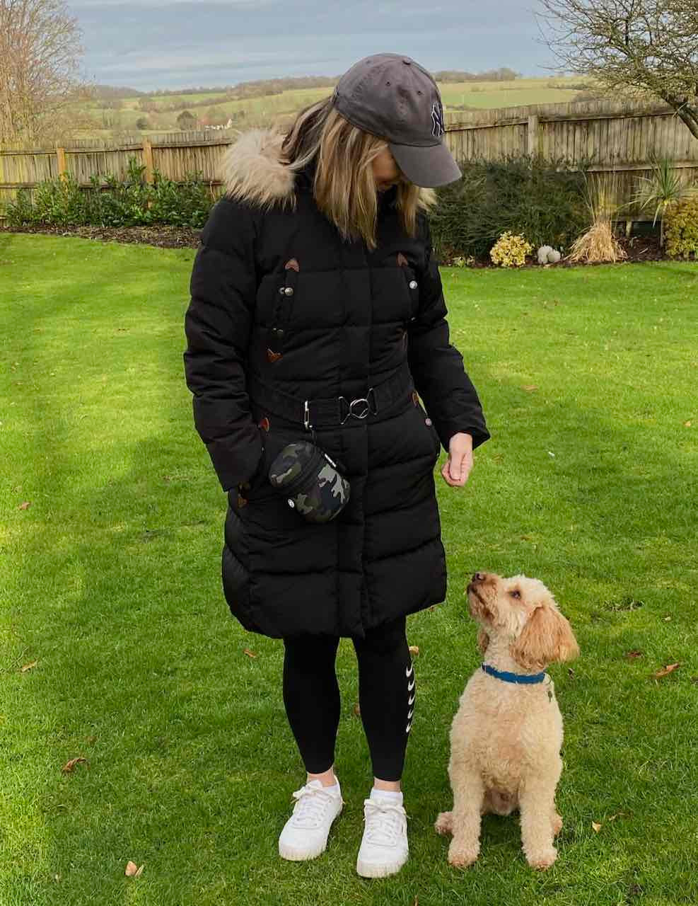 Dog dicky bag attached to coat belt with cockapoo