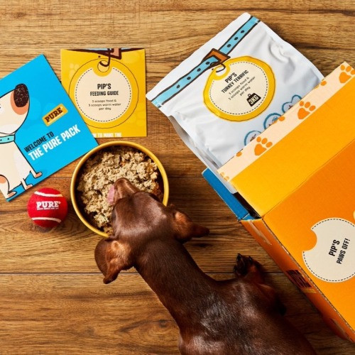 Pure dog food transition pack and a dachshund dog