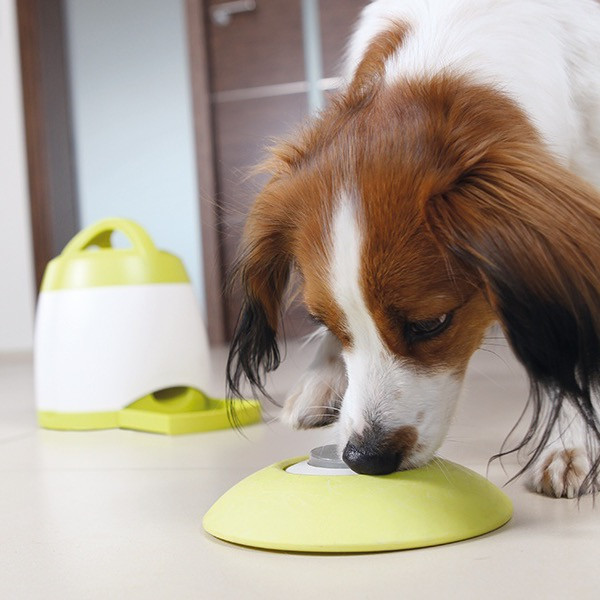 Trixie memory trainer game for dogs