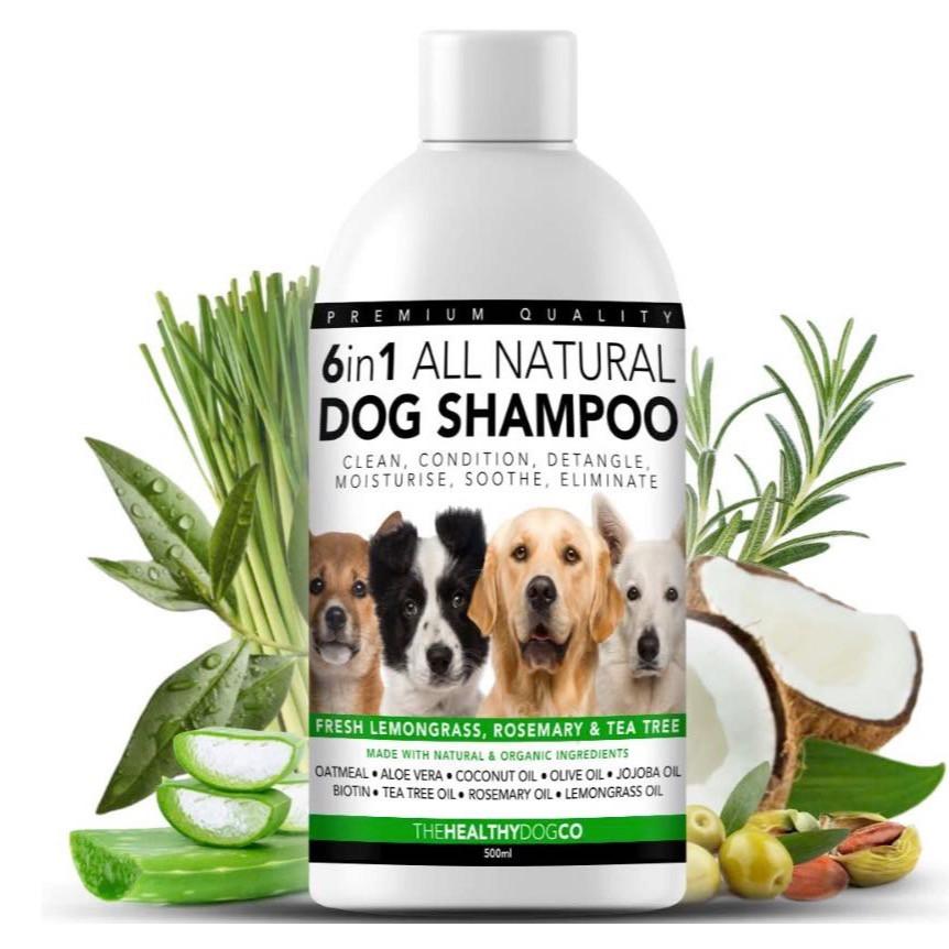 A bottle of dog shampoo formulated to detangle coats, alongside a coconut, rosemary and aloe vera plants