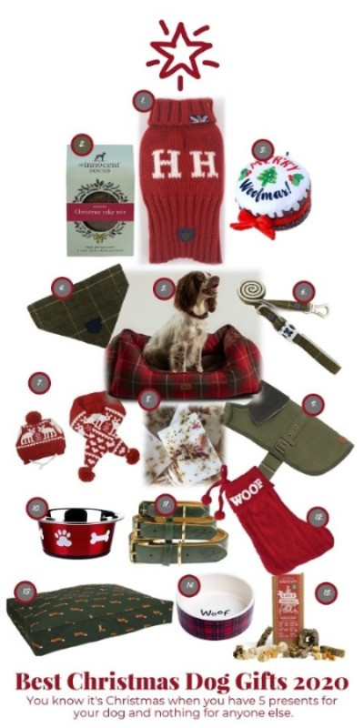 Christmas dog gifts with jumpers, puppy toys and dog  treats