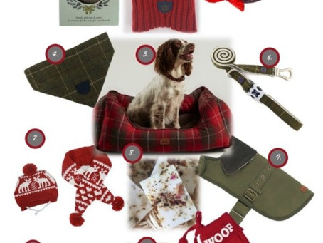 Best Christmas Dog Gifts 2020