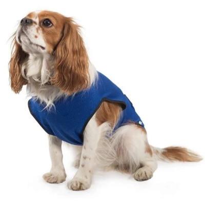 Dog wearing a cooling vest