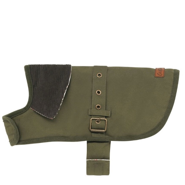 A reversible dog coat in green with a waxed finish