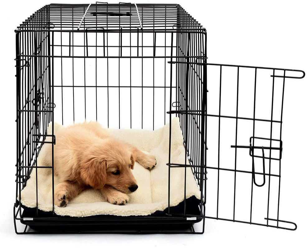 puppy lying in a dog crate with the door open