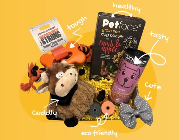 Ultimate dog subscription box including treats