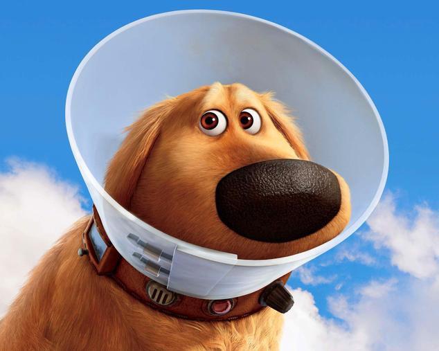 Cartoon dog wearing a cone of shame