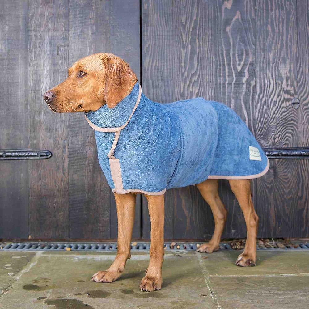Dog in a Ruff & Tumble dog drying coat