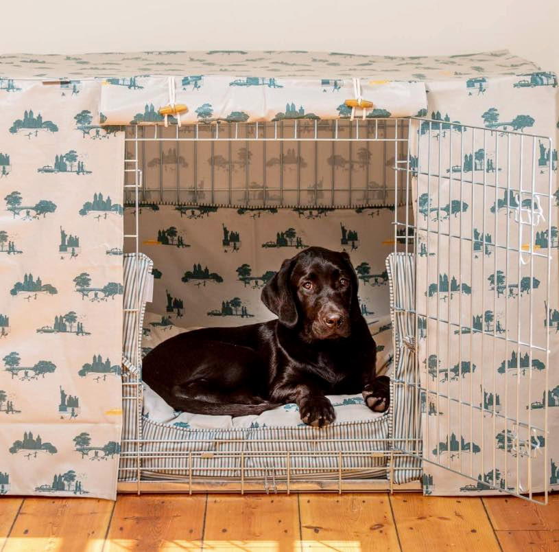 A dog sitting in a crate covered with a cream and blue Lords and Labrador dog crate cover